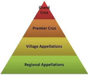 burgundy classification