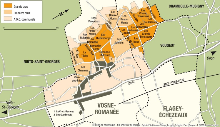 Vosne Romanee vineyards